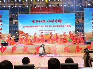 澳门博彩正规网址县举办庆祝首届农民丰收节暨第三届红提葡萄节活动