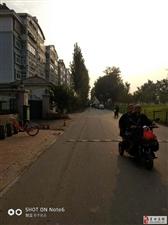 丰收路上的乐园小区和云门山体育场的小路上摆摊卖水果蔬菜的把路给堵了。