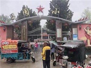 漯河一小学被投诉强收餐费变相补课,校方回应:完全自愿!