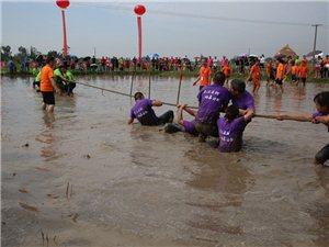 之了摄影作品:中国农民丰收节,广汉市新平镇桂红村稻田拔河庆丰收