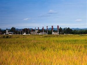 景色如画~庆祝中国第一个农民丰收节!