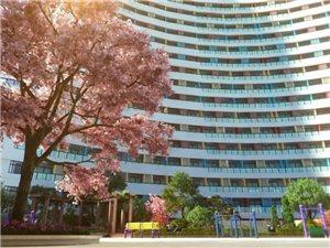 潢川三环路这地方400个床位对外出租,养老不是难题!