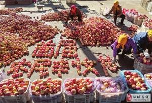 """用苹果组成的""""首届农民丰收节"""""""