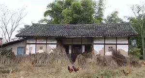 农村户口迁出后,留下的宅基地和房屋最终归谁所有?