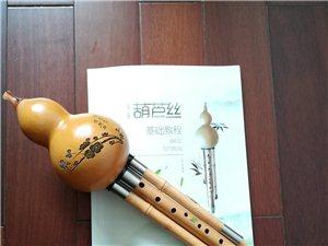 澳门太阳城娱乐直笛、超七孔葫芦丝公益培训班开始报名了,零基础免费学(九孔)