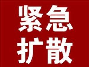 汉中拟新增及调整12条公交线路其中新增2条