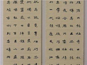 知名书法家邹家喜先生为本人《澳门太阳城娱乐赋》书写条幅