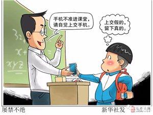 上课玩、下课玩、自习玩……孩子们在学校里用手机,怎么就管不住?