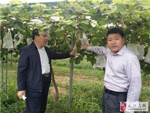 【科普武功】广东和平县科协考察武功县科协改革试点工作