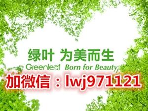 新疆有绿叶实体店吗@在新疆做绿叶找谁@新疆有绿叶吗?