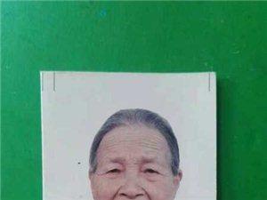 【寻人启事】85岁老奶奶在龙脑走失,急寻!望广大网友扩散寻找!