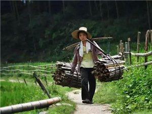 丰都农村留守妇女的现实生活,男人们看了都自愧不如!