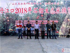 丹江口2018年石榴生态采摘节。
