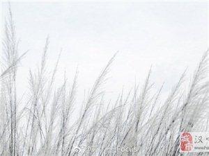雨中打卡天汉湿地公园  超美