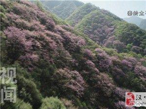 这几张图来告诉你 秦岭到底有多美!