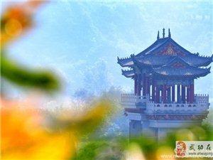 【古城见证】武功古城:南大门建设纪实――党小成