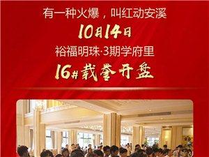 10月14日安溪裕福明珠3期16#楼载誉开盘 全城争藏