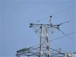 突发!这个15岁澳门巴黎人投注娱乐少年再一次爬上高压塔!