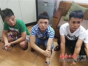 酒后殴打服务员;用火锅汤汁泼客人;三亚9名男子被依法刑拘
