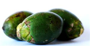 槟榔究竟能不能吃?槟榔的危害是无稽之谈,中国槟榔食法很安全