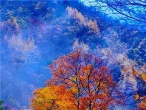 美丽的云雾山,了解一下