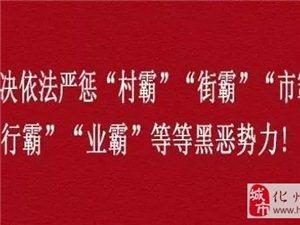 化州检察院认定:东山街道蔡德志案为首宗涉黑案件!
