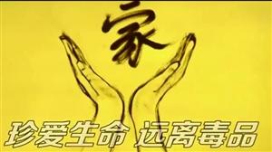 白洋淀小渔村抓获河北大毒枭!