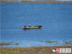 苏城巴彦摄影之大美呼兰河口湿地-罗永春
