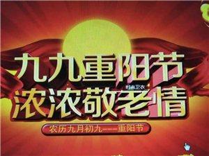 """""""九九重阳"""
