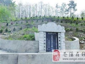 """堂嫂埋葬在""""板优梁""""的松岗上,与苏轼亡妻王弗一样"""