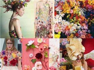 色彩,焕发艺术魅力,如夏花般绽放!