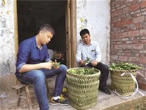 这个丰都人靠种植中药材走上致富路!还带动村民增收致富!