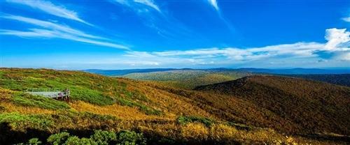 白城这个地方榜上有名!第四批全国森林康养基地试点名单公示!吉林省仅有8家入围