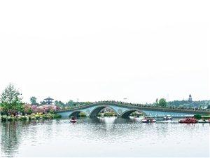 樱花烂漫凤凰湖~~~2018年3月30号青白江凤凰湖(组图)