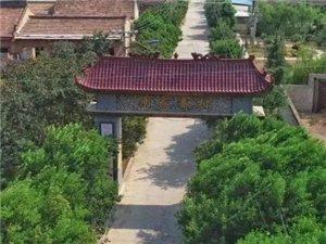 【大荔一村一故事】之两宜镇周家寨村、南贝村。