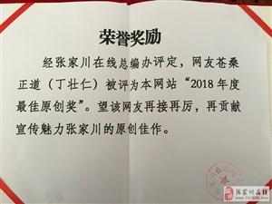 """【荣誉奖励】网友苍桑正道被评为张家川在线网站""""2018年度最佳原创奖"""