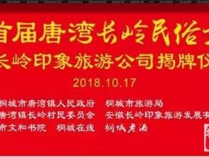 明天桐城深山里将有一场盛大活动!
