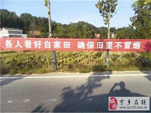 宁乡是我家,保护环境靠大家