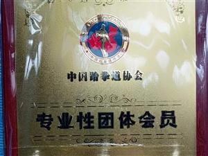 桐城跆拳道本区域内专业性团体会员单位