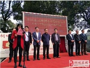 桐城首届唐湾长岭民俗文化节现场曝光!全是人人人人人!