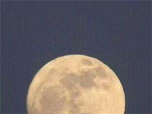 《月夜有感》