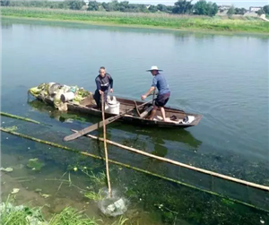 富顺人你发现了吗?沱江河的水质有了明显改善!