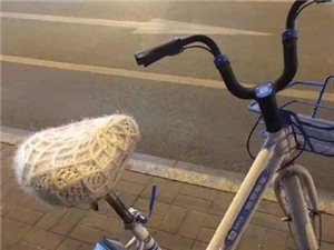 全城寻找!你为共享单车量身定制的毛线套,很温暖……