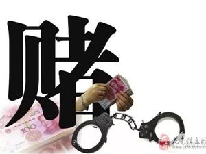 一锅端!在渡江马头新村聚众赌博的11人被抓!