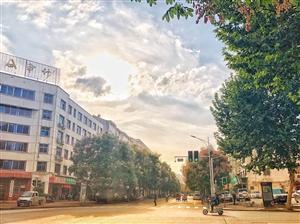 """栾川的这条""""路"""",你一定走过,可99%的栾川人不知道它有多美。"""