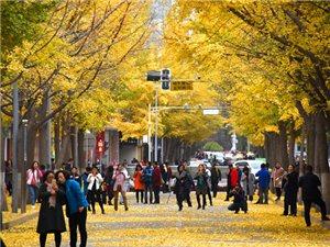 秋天的古城天水