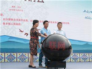"""白沙县""""互联网+爱心消费扶贫农副产品展销会活动""""认购金额108.5万元"""