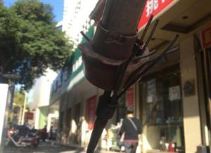 人行道上的'刺客'裸露钢丝险伤眼球