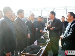 张家川县一级煤炭配送市场欢迎社会各界参观指导工作