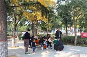 邹城铁山公园见闻:银杏树下!